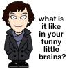 Sherlock Funny Brains
