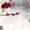 erdbeerlimonade userpic