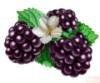 Марина = egevika_vl: ягодка