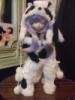 Panda, Dollfie