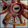 cephalopod hi