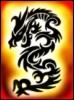 flame_draco
