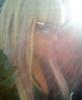 carpe_diem_ego userpic