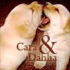 Lyss: misc. ♣ lots {mord'pups;cara&dahlia}