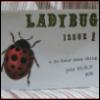 ladybug zine