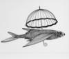 рыбка-зонтик