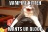 VampKitteh