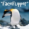 penguin, faceflipper