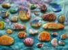 камни-рыбки