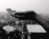 rain2010 userpic