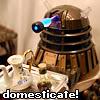 domesticate