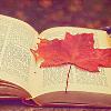 quilbi userpic