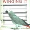Mr Winger (default)
