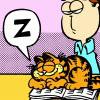 Jo Ann: Garfield: Asleep on Jons book