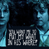 blackwolf: LOTR - Pip/Merry - My what in his where?