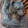 vladis_grutas userpic
