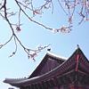 Seoul <3