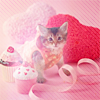 [died of cute] kitty & cupcakes