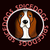 Spicedogs: Basset-winter