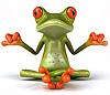 zen_zoo userpic