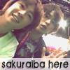 arashic0804: sakuraiba here