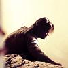 Stef: LOST: Sawyer/Juliet (grief)