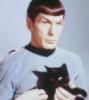 Spock mit Katze