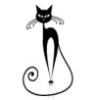 un_gato userpic