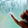 超ちゃ人: cat (猫): drawingφ(・ω・ )