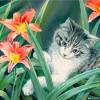 Animals: Cat (Flowers)