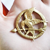 hidden meanings, The Hunger Games