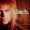 Jareth Bitch