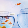 faithvssam: {stock} freedom fish