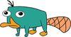 Перри-утконос
