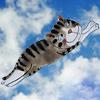 летучая кошка