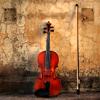 Январия: скрипка