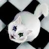 ghostlycat