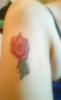 lady_rosepetal userpic