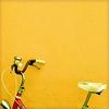 withoutmaps userpic