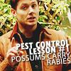 Pest Control Lesson