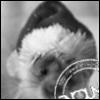 echo_igor userpic