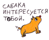 vn_volhov userpic
