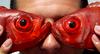 рыб+очки