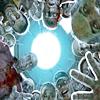 Zombie Circle