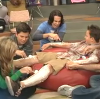 shave gibby's limbs