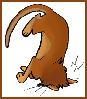Rowan aka: The Seticat: * cat - klutz - kiraxlee