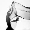 Gaga: Elegant