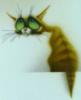 затасканная кошка