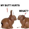 Bee: Chocolate Bunnies