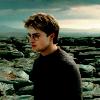 Flannery: HP | Harry